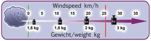Dudek Nucleon 1.5 RC-Paraglider